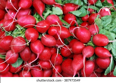 Red radish on market. Vegetables background.