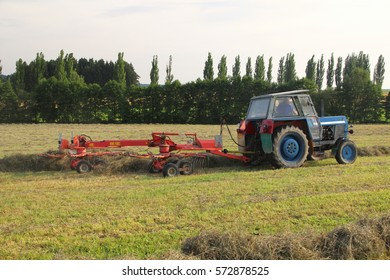 Red rakes attached to old tractor, preparing hay for baling, straw in rows, back perspective, field in bio agriculture