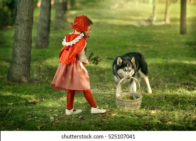 Red Riding Hood and gray wolf in the forest