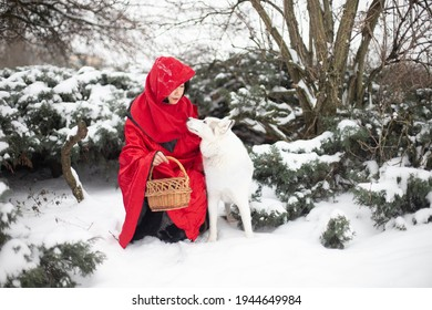 Red Riding Hood scenery. A woman in red clothes and a dog sit together in a snowy forest pretending to be heroes of a traditional fairy tail for kids. Isolated red on white snow background.