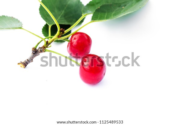 red ripe cherry on a background of trees and the sun
