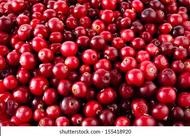 Red ripe cranberries background