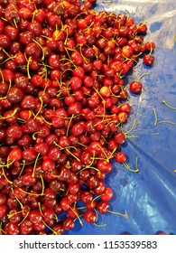 Red ripe and delicious cherries. Cherry stand on the market.