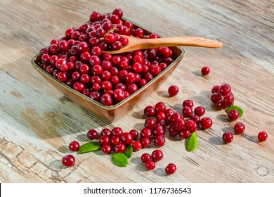 Red ripe fresh cranberry berry wooden plate on old wooden table, rustic style, cowberry copyspace