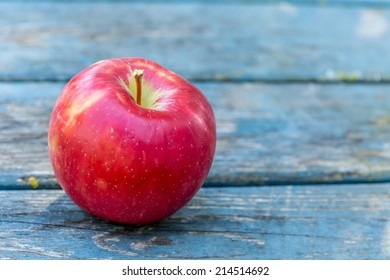 A red ripe Honeycrisp apple fresh from the farm.