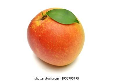 Red ripe mango summer fruit with mango leaves on white background