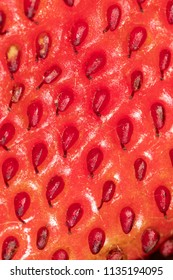 Red ripe strawberry as an abstract background