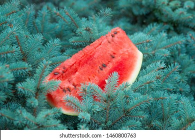 Red ripe watermelon on the Christmas tree