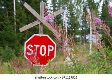 Red road sign stop in a summer day. Forest and flowers as a background.