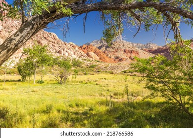 Red Rock Canyon State Park, Nevada, USA