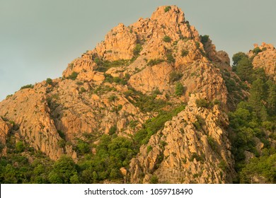 Red rock formation and pine trees at Les Calanches de Piana, Corsica, France.