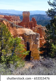 Red rock formations, green pine trees and brush at 8800 feet in elevation, Agua Canyon at Bryce Canyon National Park, Utah.