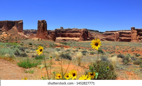 Red rock hills in Arches national park