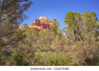 Red Rock mountain near Sedona with blue sky framed with green forest trees, Arizona, USA