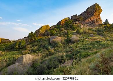 Red Rocks, Colorado The fauna and flora around the rocks