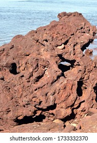 Red rocks formation on the Ocean