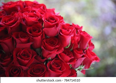 red roses bouquet images, stock photos & vectors | shutterstock