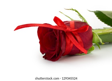 red rose bud, the petals of red roses