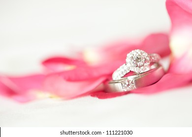 Red rose with diamond ring on white background