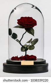 """red rose in a flask from the movie """"Beauty and the Beast"""""""