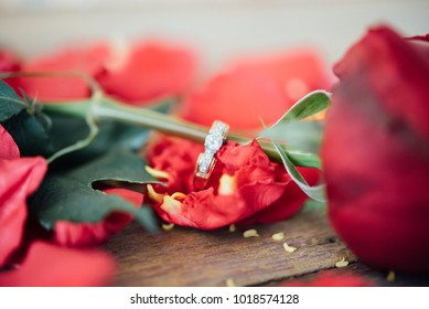 Red rose flower nature beautiful flowers from garden petal of red rose flower and diamond ring for valentines or marriage on wooden floor in Valentine's Day, Wedding, Romantic Love Valentine concept