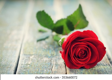 Red rose flower on vintage wooden background