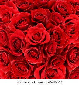 Red rose flowers bouquet for background