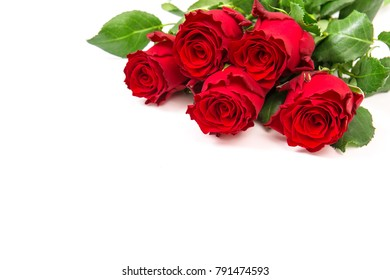 Red rose flowers bouquet on white background. Fresh blossoms
