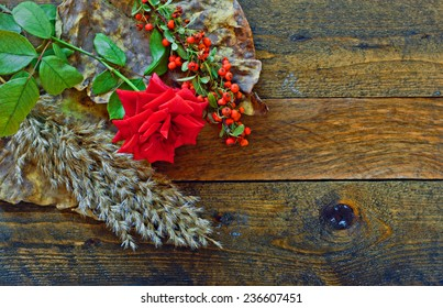 Red rose and foliage on rustic wooden table