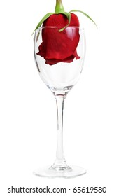 Red Rose in a glass goblet on a white background