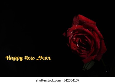 red rose with happy new year ez canvas