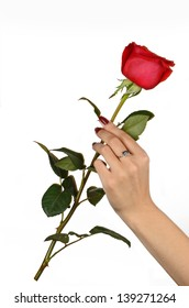 Red rose in his hand on a light background
