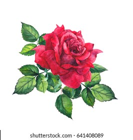 Red rose with leaves. Watercolor for wedding, save date card