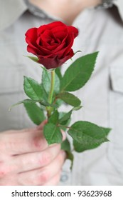 Red rose in mans hand. Focus on rose