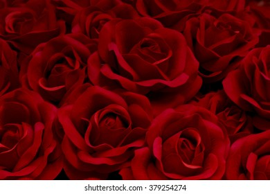 Red rose natural texture background