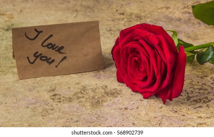i love you from red rose petals images stock photos vectors