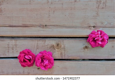 Red rose on a background of a wooden brown beam.