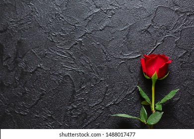 Red rose on a black background, stone. A condolence card. Empty space for emotional, quotes or sayings. The view from the top.