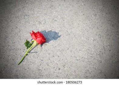 3dde84b55d4998 Sad Rose On Snow Stock Photo (Edit Now) 1340524661 - Shutterstock