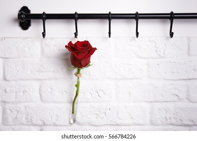 red rose on rank for kitchen utensils. romantic concept