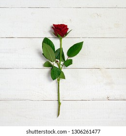 red rose on rustic white painted wood with copy space, high angle view from above