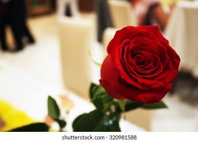 Red Rose On Wedding