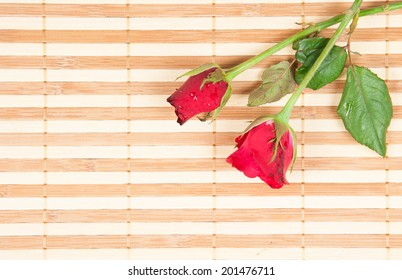 red rose on a wood background
