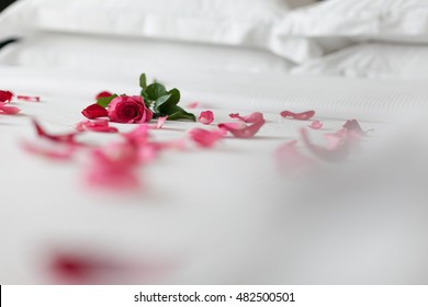red rose petal on white bed honeymoon