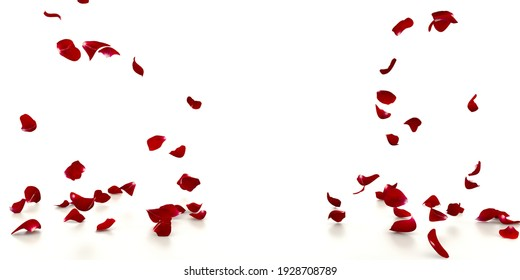 Red rose petals fall on the white mirrored floor. White background