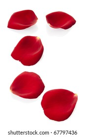 Red rose petals isolated on white, clipping path included