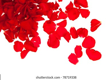 Red rose petals isolated on white - Valentine's Day