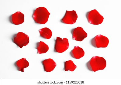 Red rose petals on white background, top view