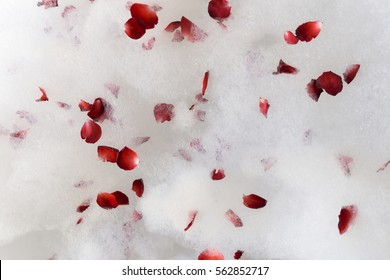 Red rose petals scattered on the white bath bubble on the Jacuzzi tub, top view