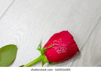 a red rose is symbol of love